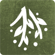 herbs icon preserving