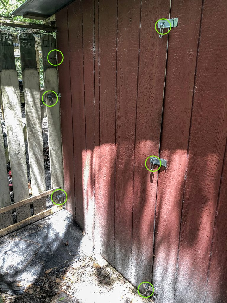 Latches on Hen House